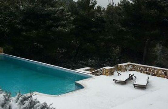 Modern villa with pool in Afidnes area